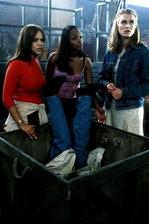 Nach dem Tod ihrer Ehemänner kommt den Freundinnen Shirley (Brooke Shields, r.), Linda (Rosie Perez, l.) und Bella (N'Bushe Wright, M.) eine grandi... - Bildquelle: ABC