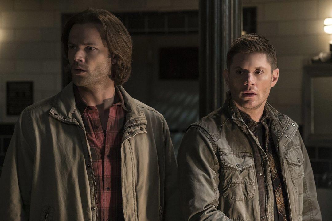 Um Cas zu retten, der immer noch mit Lucifer zusammen in einem Körper gefangen ist, fassen Sam (Jared Padalecki, l.) und Dean (Jensen Ackles, r.) ei... - Bildquelle: 2014 Warner Brothers