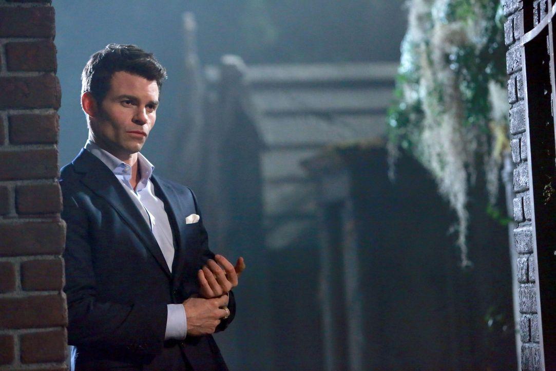Elijah (Daniel Gillies) geht eine fragwürdige Allianz ein ... - Bildquelle: Warner Bros. Television