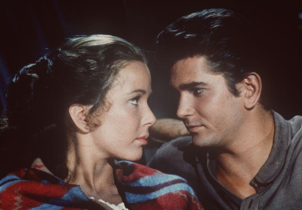 Little Joe Cartwright (Michael Landon, r.) und Laura (Brooke Hayward, l.) haben sich verliebt. - Bildquelle: Paramount Pictures