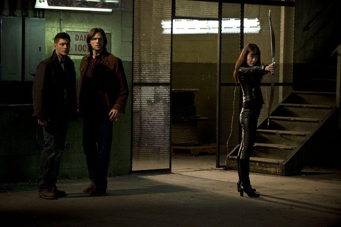 Sam (Jared Padalecki, M.) und Dean (Jensen Ackles, l.) sind erstaunt: Warum sollte sich die Göttin Artemis (Anna Van Hooft, r.) für einen Zombie int... - Bildquelle: Warner Bros. Television
