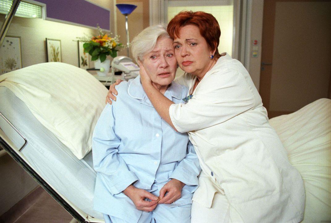 Stephanies Oma Hulda (Lissy Tempelhof, l.) bittet Schwester Klara (Walfriede Schmitt, r.), niemandem etwas davon zu erzählen, wie krank sie wirklich... - Bildquelle: Noreen Flynn Sat.1