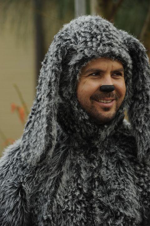 Wilfred (Jason Gann) ist ein sieben Jahre alter Hund, der gerne Bier trinkt, Zigaretten und Marihuana raucht und gerne Junkfood isst ... - Bildquelle: 2011 FX Networks, LLC. All rights reserved.