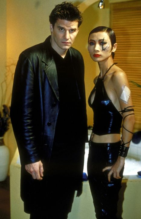 Jhiera (Bai Ling, r.), eine Dämonin aus einer anderen Dimension, und Angel (David Boreanaz, l.) finden langsam Vertrauen zueinander ... - Bildquelle: TM +   2000 Twentieth Century Fox Film Corporation. All Rights Reserved.
