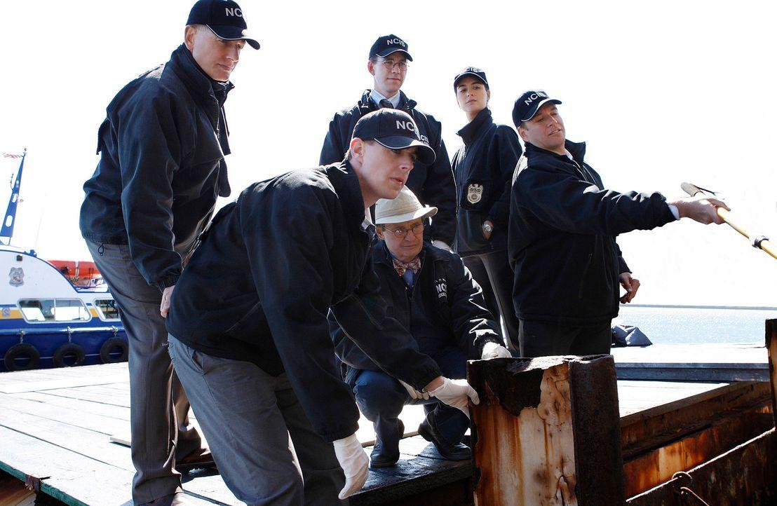 Als Petty Officer Scott Roebuck am Strand von Maryland  erschossen aufgefunden wird, werden (v.l.n.r.) Gibbs (Mark Harmon), McGee (Sean Murray), Duc... - Bildquelle: Cliff Lipson CBS Television