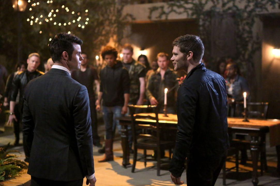 So leicht lassen sich Elijah (Daniel Gillies, l.) und Klaus (Joseph Morgan, r.) nicht vom Thron stoßen ... - Bildquelle: Warner Bros. Television