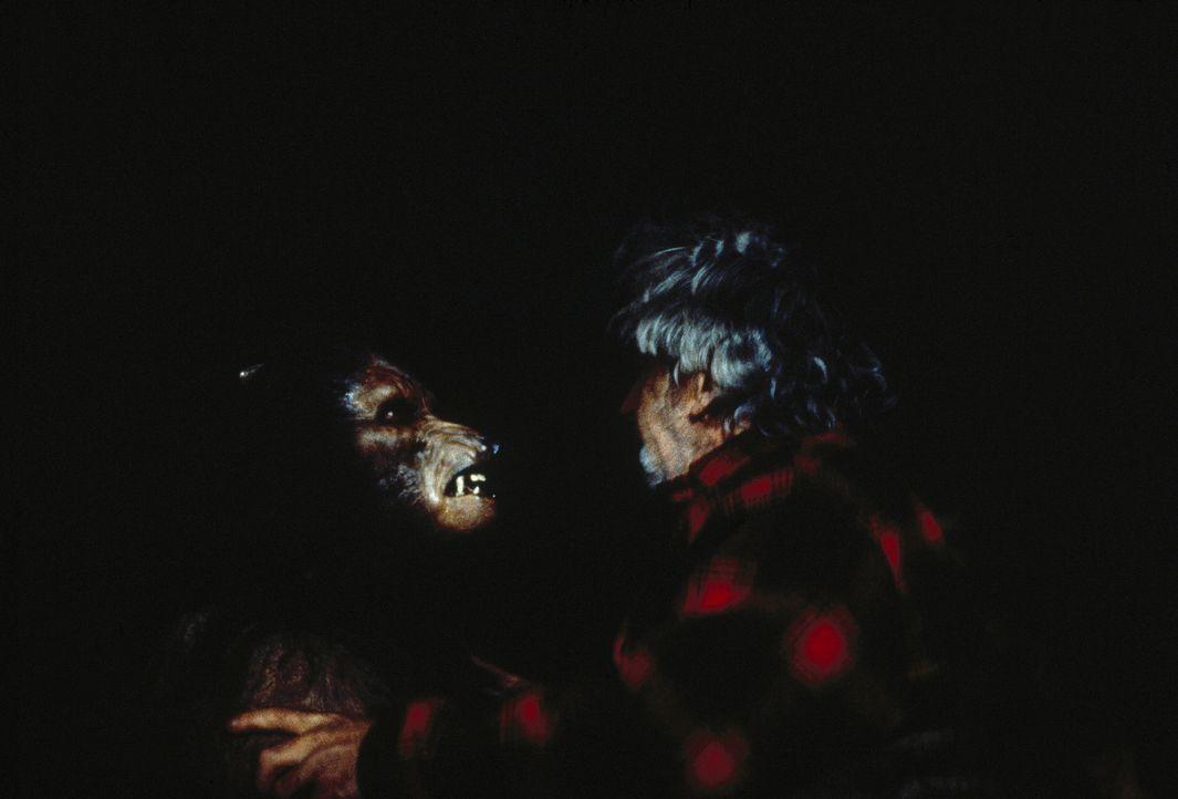Plötzlich steht der Rancher Jim Parker (Donnelly Rhodes, r.) einem werwolfähnlichen Wesen gegenüber ... - Bildquelle: TM +   2000 Twentieth Century Fox Film Corporation. All Rights Reserved.