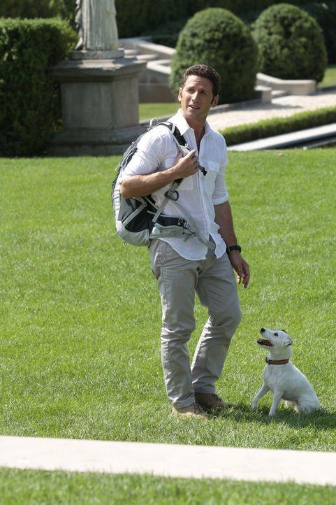 Hank Lawson (Mark Feuerstein) - Bildquelle: Giovanni Rufino 2012 USA Network Media, LLC/ Giovanni Rufino