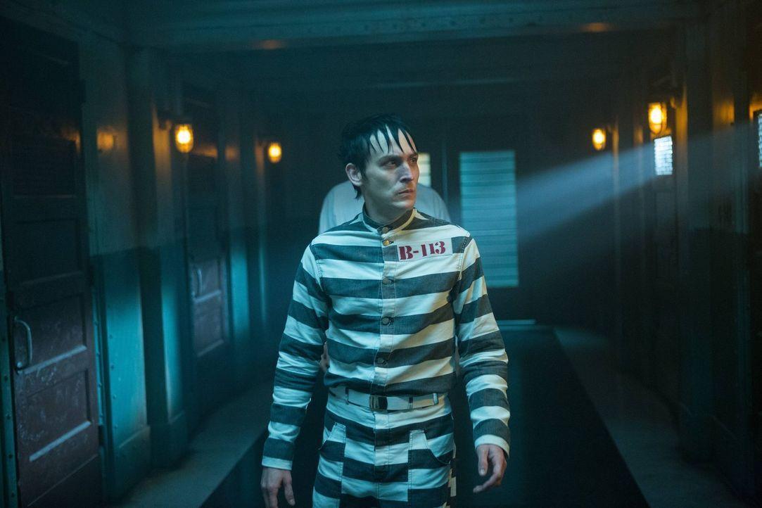 Muss sich an sein neues Leben in Arkham erst gewöhnen: Penguin (Robin Lord Taylor) ... - Bildquelle: Warner Brothers