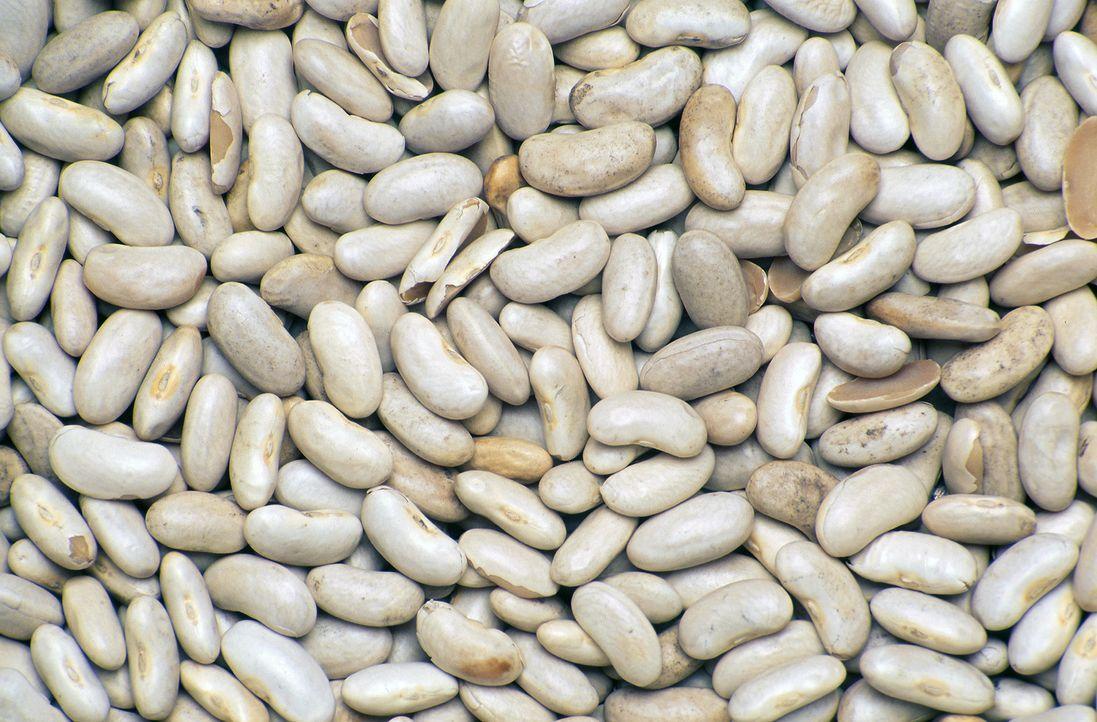 Die großen weißen Bohnen sind für die Herstellung eines Weiße-Bohnen-Auflaufs in Frankreich sehr beliebt. - Bildquelle: Courtesy Actuality Productions