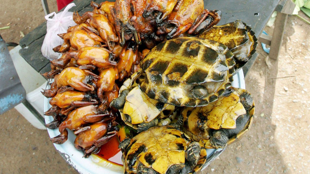Essen extrem - Bildquelle: dpa