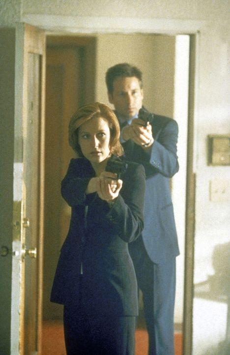 Mulder (David Duchovny, r.) und Scully (Gillian Anderson, l.) fahnden in einem Schnellrestaurant nach einem Mörder mit einer besonders bizarren Vorl... - Bildquelle: TM +   2000 Twentieth Century Fox Film Corporation. All Rights Reserved.