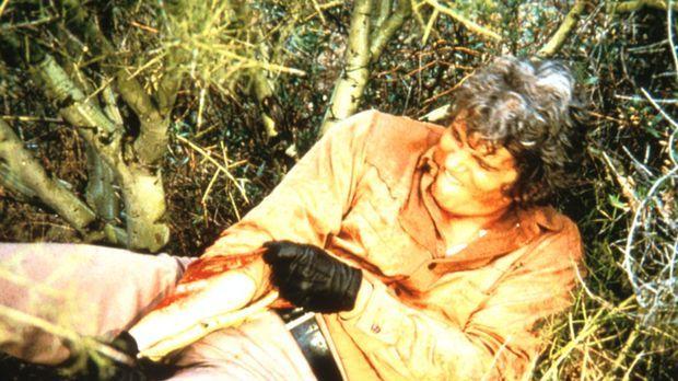 Auf der Flucht vor Tanner hat sich Little Joe (Michael Landon) den Arm gebroc...