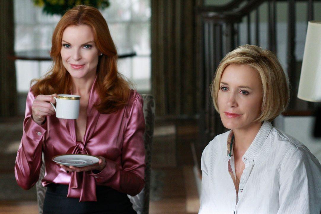 Rückblick: Während Lynette (Felicity Huffman, r.) sich mit dem Gedanken auseinandersetzten muss, wieder Mutter zu werden, versucht Bree (Marcia Cros... - Bildquelle: ABC Studios