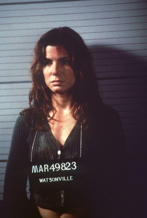 Aufgrund manipulierter Daten gerät Angela (Sandra Bullock) in die Fänge der Polizei. Nun sehen die Killer ihre Chance gekommen, sie endlich elimin... - Bildquelle: Columbia Pictures Corporation