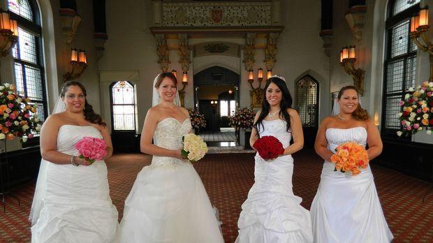 Jede der vier Bräute glaubt, die perfekte Hochzeit organisiert zu haben, doch...
