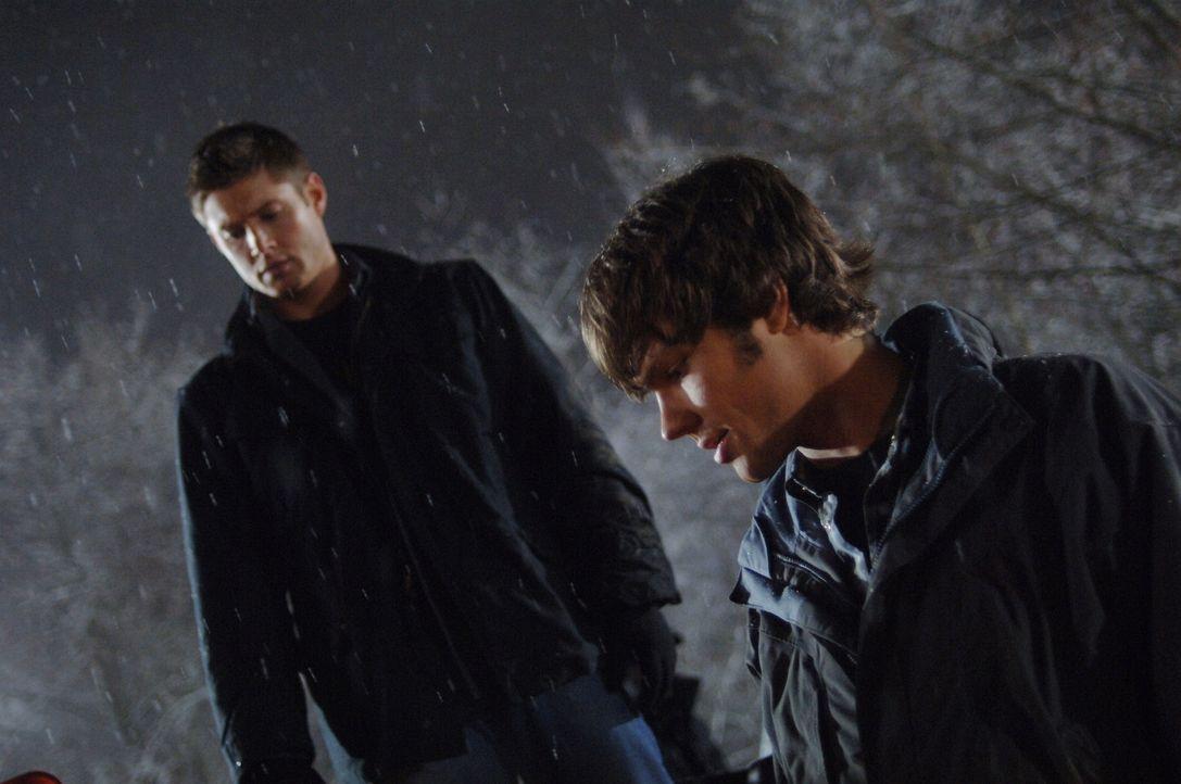 Versuchen einen mysteriösen Truck zu stoppen: Sam (Jared Padalecki, r.) und Dean (Jensen Ackles, l.) ... - Bildquelle: Warner Bros. Television