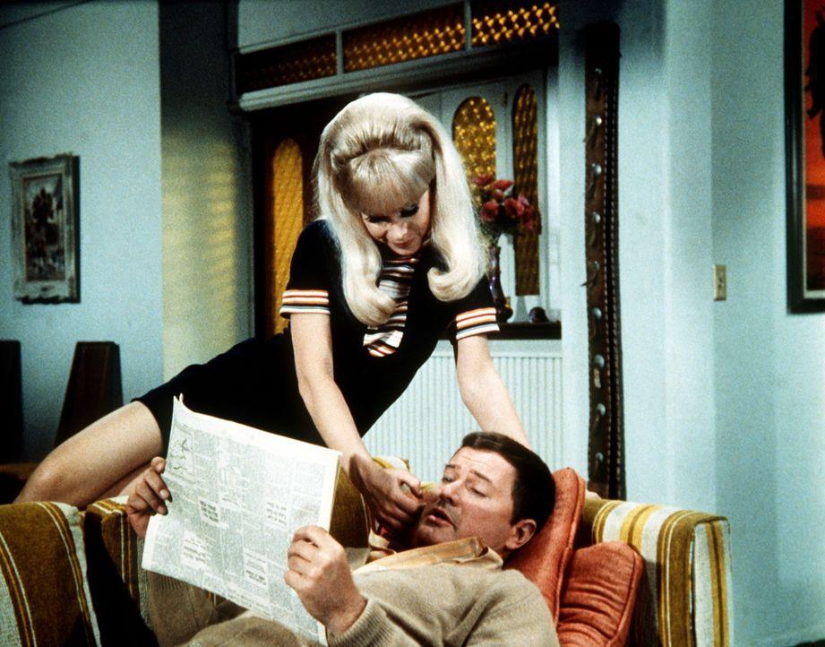 Solange sie Besuch vom Neffen der Bellows haben, muss Tony (Larry Hagman, r.) Jeannie (Barbara Eden, l.) immer wieder ermahnen, nicht zu zaubern, da... - Bildquelle: Columbia Pictures