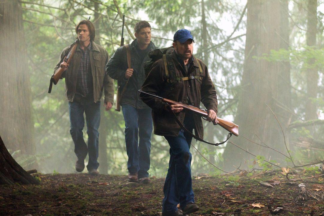 Versuchen im New Jersey State Park, eine Kreatur zu schnappen, die Menschen im Wald tötet: Sam (Jared Padalecki, l.), Dean (Jensen Ackles, M.) und B... - Bildquelle: Warner Bros. Television