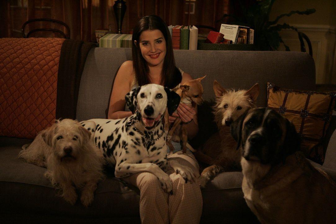 Robin (Cobie Smulders) kann ihre Gefühle für Ted nicht leugnen, dennoch muss sie schmerzhaft zur Kenntnis nehmen, dass er noch in einer Beziehung... - Bildquelle: 20th Century Fox International Television