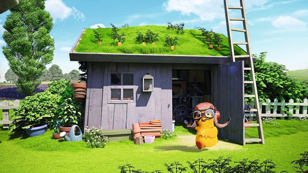 Das kleine Zweiohrküken (Bild) hat einen großen Traum: das Fliegen. Doch irgendwie will es damit nicht klappen, aber ihr Freund Keinohrhase hilft ih... - Bildquelle: Warner Brothers