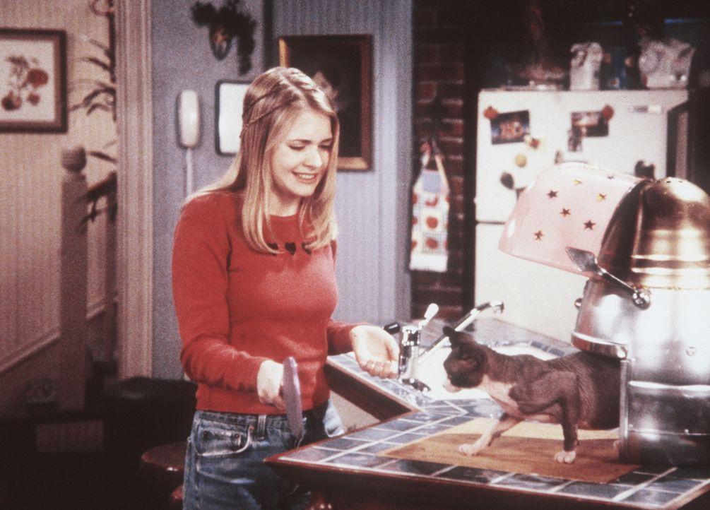 Sabrina (Melissa Joan Hart) versteht sich als Hexe sehr gut im Umgang mit den Tieren ... - Bildquelle: Paramount