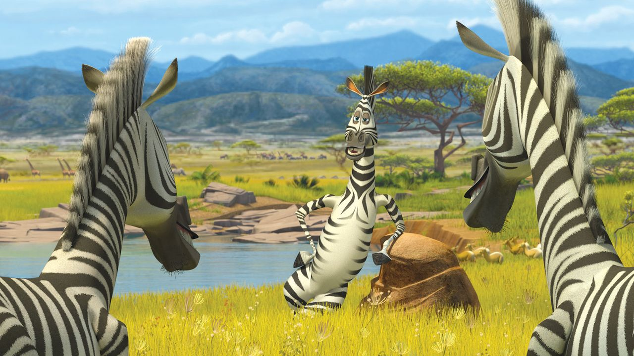 Hey, ihr seht ja aus wie ich! Marty (M.) trifft in Afrika erstmals auf gleichgesinnte Zebras ... - Bildquelle: (2008) DREAMWORKS ANIMATION LLC. ALL RIGHTS RESERVED.