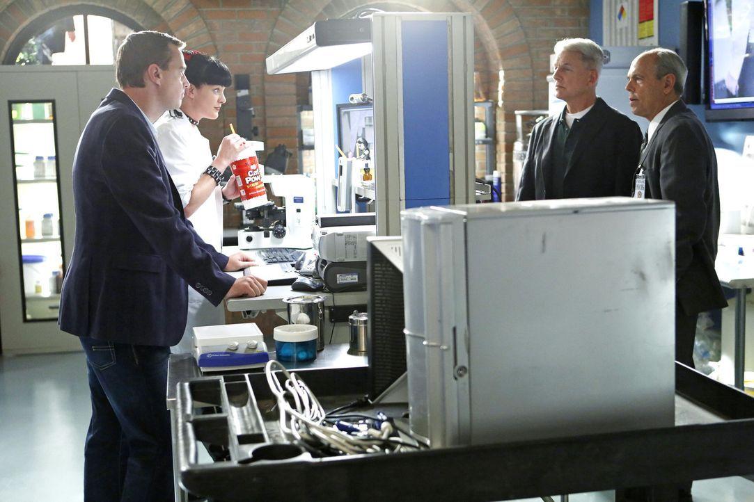 Gibbs (Mark Harmon, 2.v.r.),  Abby (Pauley Perrette, 2.v.l.) und McGee (Sean Murray, l.) schließen sich mit FBI-Agent Fornell (Joe Spano, r.) zusamm... - Bildquelle: CBS Television