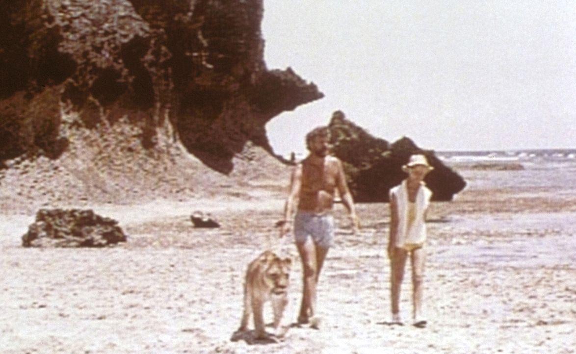 Die Wildheger Joy (Virginia McKenna, r.) und George (Bill Travers, M.) machen mit ihrer Löwin einen Spaziergang am Strand. - Bildquelle: 1965, renewed 1993 Columbia Pictures Industries, Inc. All Rights Reserved.