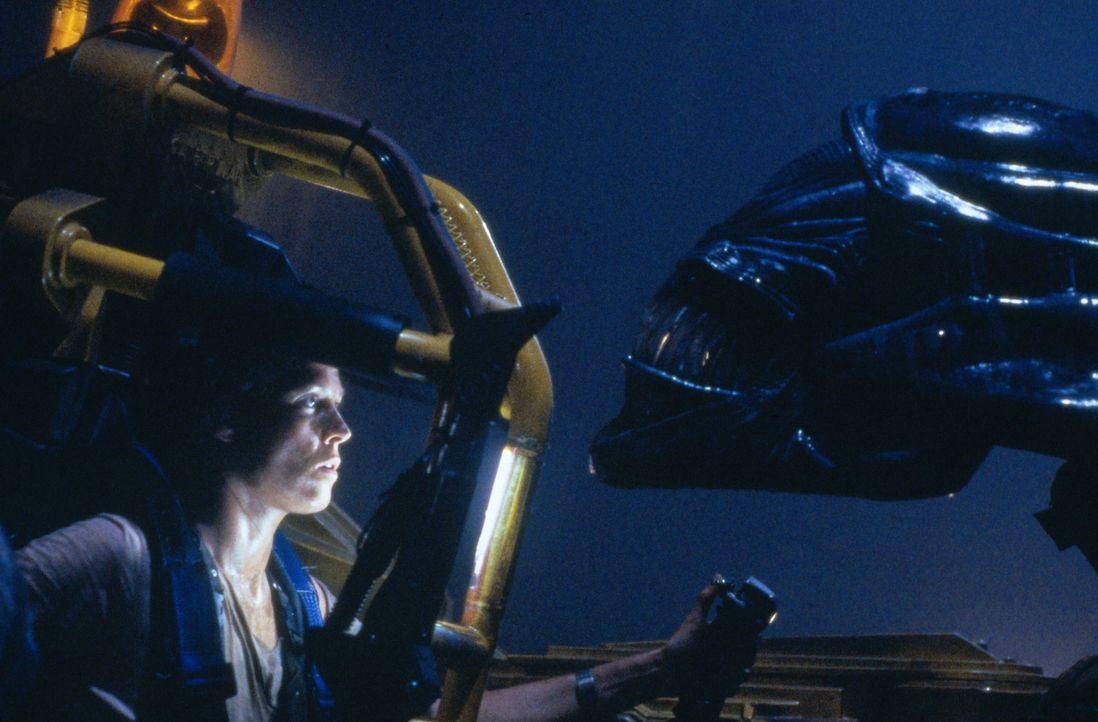 Auge in Auge mit einem Alien: In Ripley (Sigourney Weaver) erwacht der Killerinstinkt.. - Bildquelle: 1986 Twentieth Century Fox Film Corporation. All rights reserved.