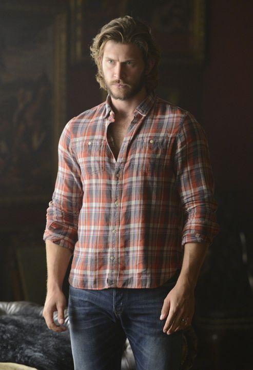 Untersucht ein seltsames Symbol: Clay (Greyston Holt) ... - Bildquelle: 2015 She-Wolf Season 2 Productions Inc.