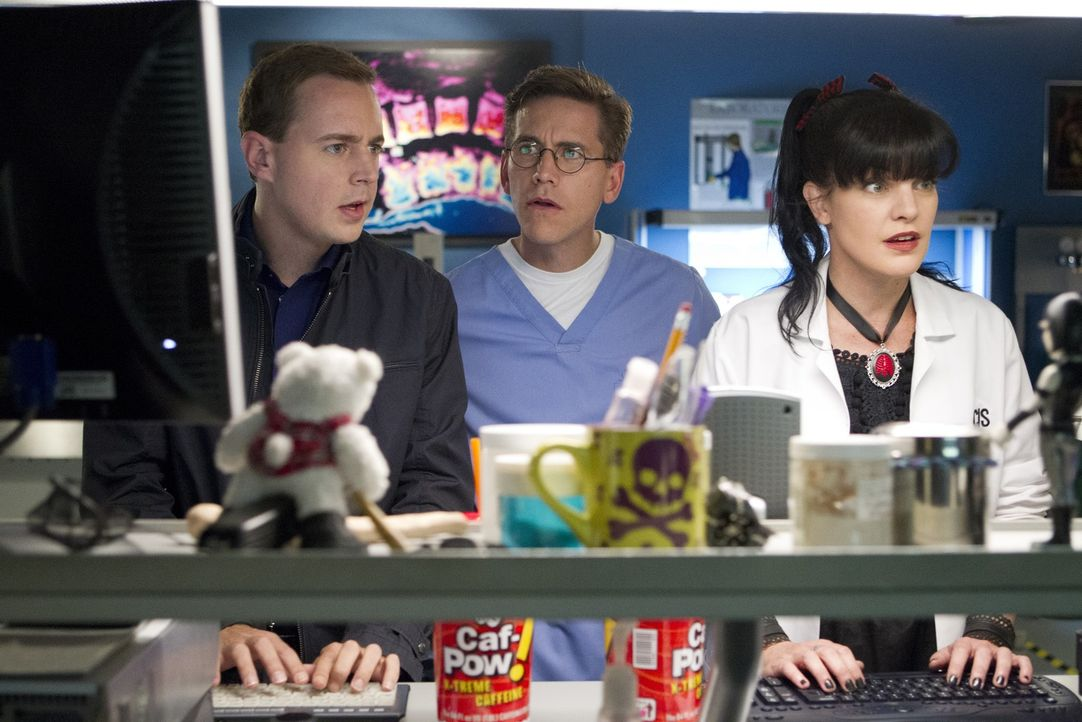 abby and mcgee dating On tuesday's ncis (8/7c on cbs), abby sciuto (pauley perrette) takes a rare trip outside her lab, and her visit to mexico could mean trouble for gibbs (mark.