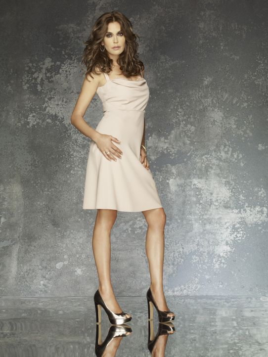 (8. Staffel) - Eine Katastrophe jagt die nächste: Susan (Teri Hatcher) ... - Bildquelle: ABC Studios