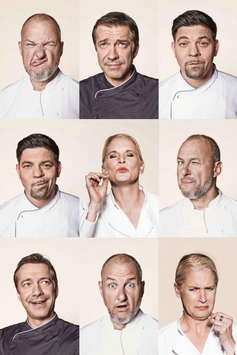 Taste_Collage - Bildquelle: SAT.1/Arne Weychardt