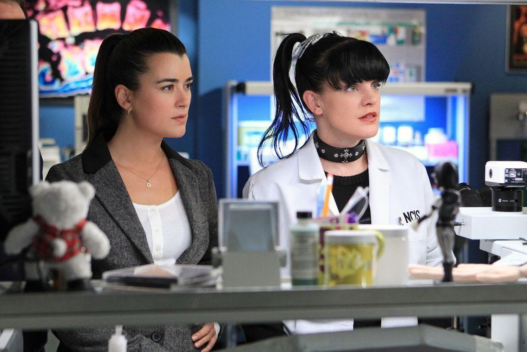 Ein neuer Fall beschäftigt Abby (Pauley Perrette, r.) und Ziva (Cote de Pablo, l.) ... - Bildquelle: CBS Television