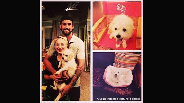 Kaley-Cuoco-Schnappi-Instagram-normancook - Bildquelle: Instagram.com/normancook