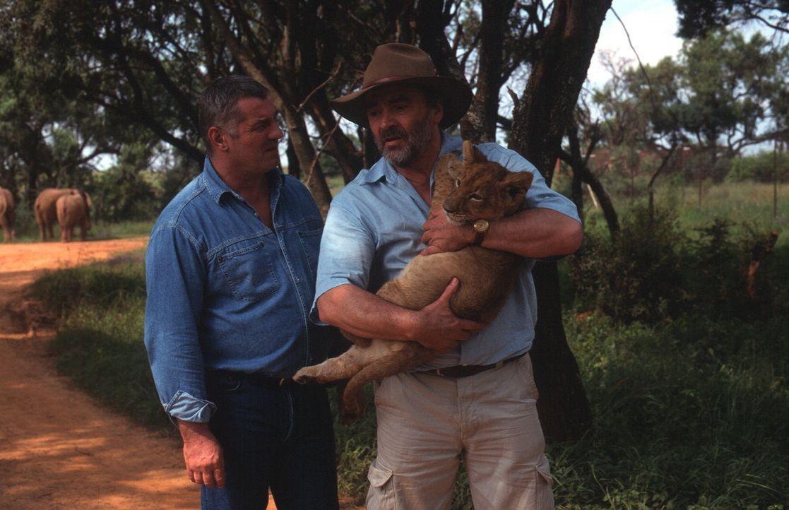 Stan Becker (Heinz Hoenig, l.) vermutet, dass Josef Kreidler (Walter Kreye, r.), oberster Tierschützer des Landes, in dunkle Geschäfte verstrickt is... - Bildquelle: Axel Fremmer Sat.1