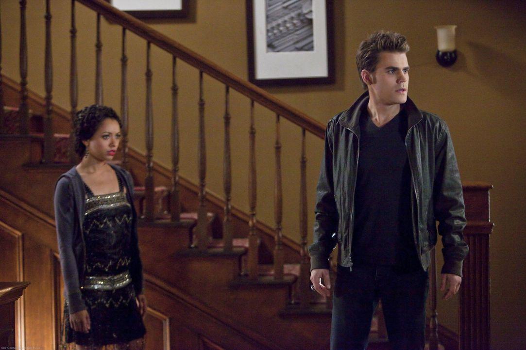 Alarics Verwandlung zum Vampir ist vollzogen. Stefan (Paul Wesley, r.) und Bonnie (Kat Graham, l.) überlegen, wie sie in endlich zur Strecke bringen... - Bildquelle: Warner Brothers