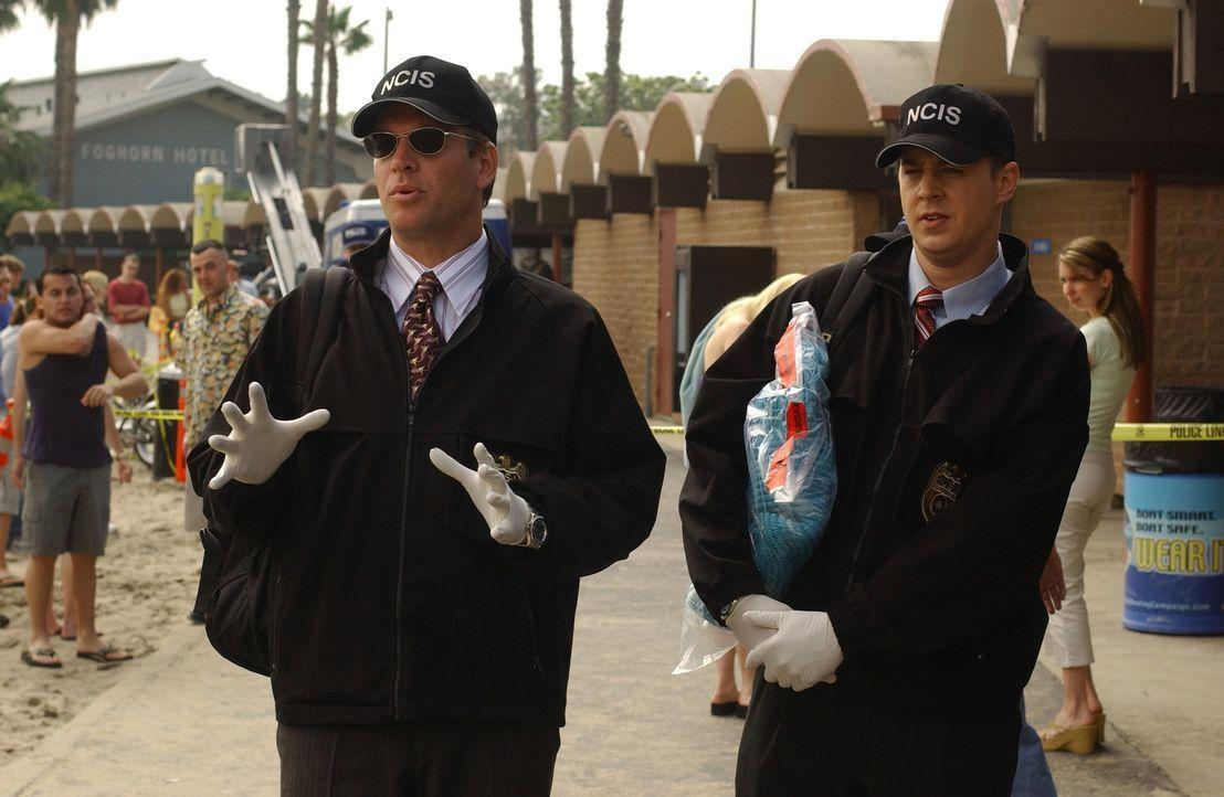 Ermitteln in einem schwierigen Fall: Timothy McGee (Sean Murray, r.) und Tony Dinozzo (Michael Weatherly, l.) ... - Bildquelle: CBS Television