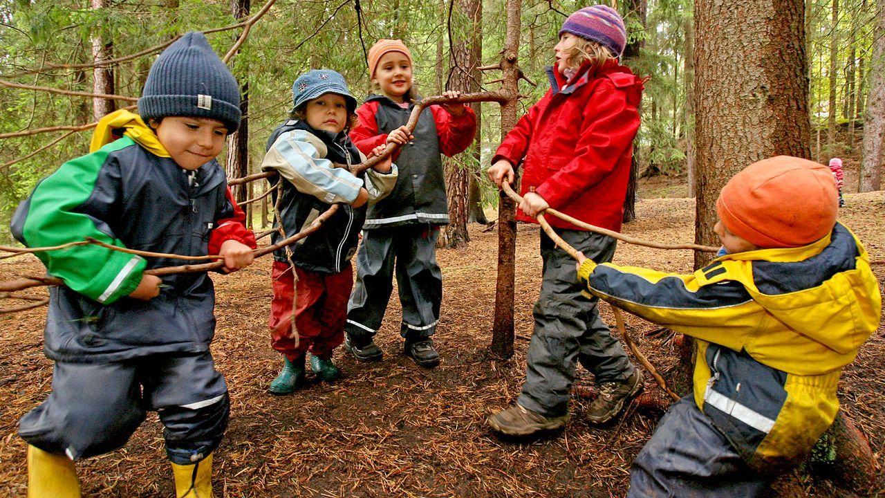 Waldkindergarten - Bildquelle: dpa