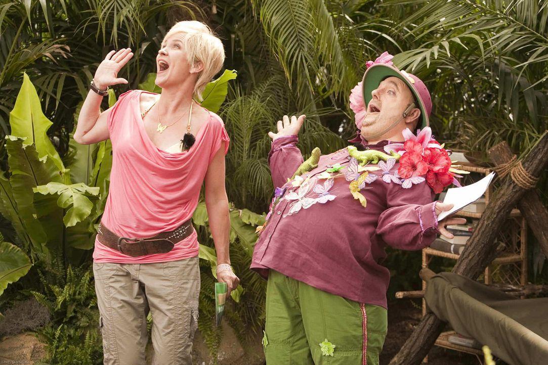 Dirk Bach (Bernhard Hoecker, r.) und Sonja Zietlow (Susanne Pätzold, l.) suchen den wahren Dschungelkönig unter ihren prominenten Teilnehmern ... - Bildquelle: ProSieben