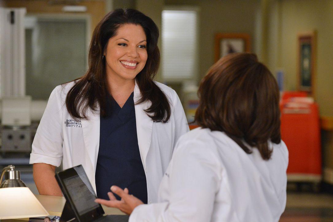Callie (Sara Ramirez, r.) ist begeistert, als ihr Miranda (Chandra Wilson, l.) tolle Neuigkeiten überbringt ... - Bildquelle: ABC Studios