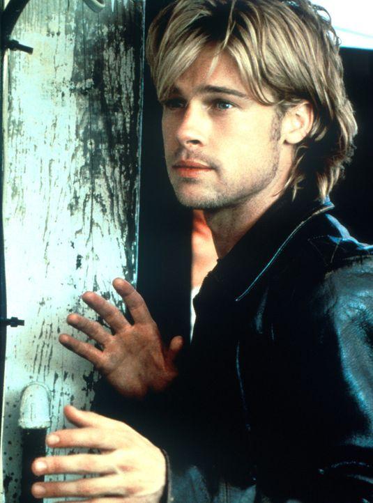 Der brutale IRA-Terrorist Francis McGuire (Brad Pitt) muss vor den Engländern wegen seiner blutigen Attentate nach Amerika fliehen. Er findet Unters... - Bildquelle: Columbia TriStar