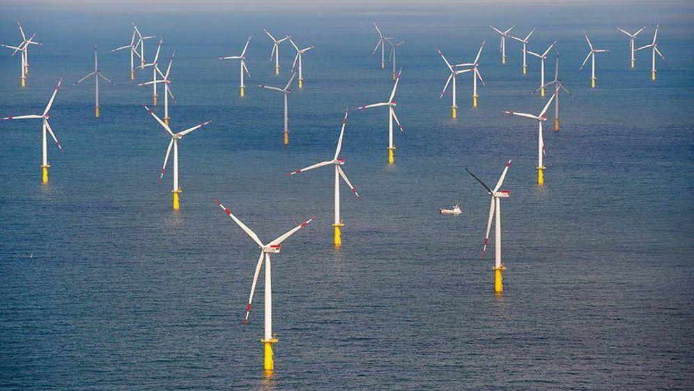 Nordsee-Windernte steigt um die Hälfte - Bildquelle: Daniel Reinhardt/dpa