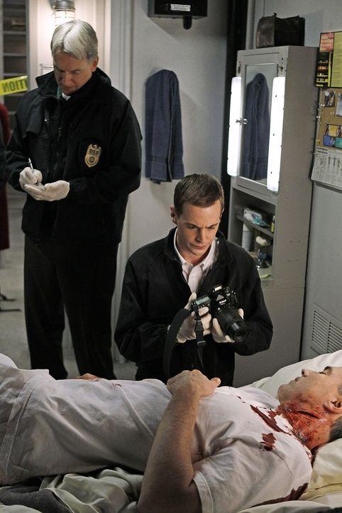 Als Commander Reynolds erschossen in seiner Koje aufgefunden wird, werden Gibbs (Mark Harmon, l.), McGee (Sean Murray, r.) und das restliche Team zu... - Bildquelle: CBS Television