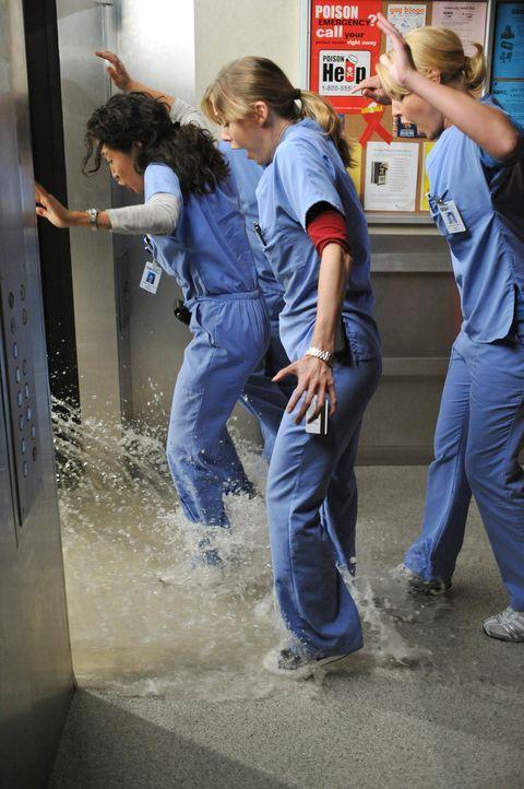 Ein Leck in der Wasserleitung des Seattle Grace Hospitals weitet sich zu einer großen Überschwemmung aus. Cristina (Sandra Oh, l.), Meredith (Elle... - Bildquelle: Touchstone Television