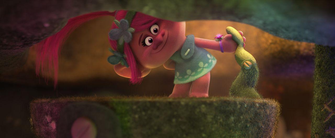 Poppy - Bildquelle: 2016 DreamWorks Animation, L.L.C.  All rights reserved.