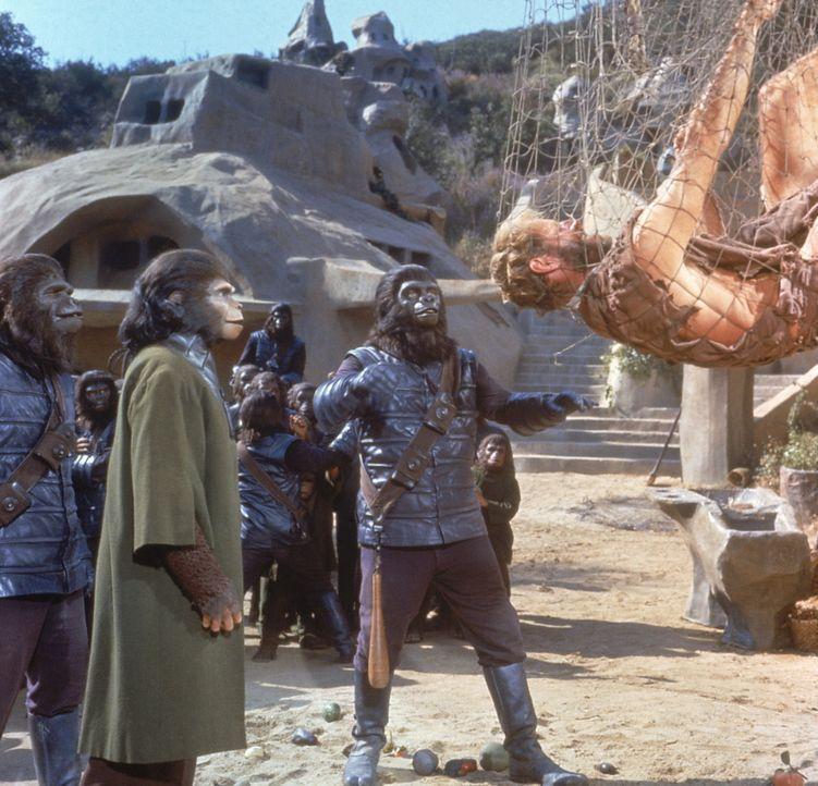 Eine Notlandung verschlägt Taylor (Charlton Heston, r.) und sein Team auf einen fremden Planeten, der von Menschenaffen regiert wird. Die Affen neh... - Bildquelle: 20th Century Fox International Television