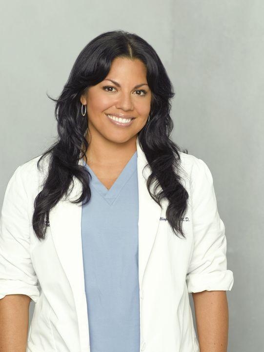 (5. Staffel) - Erfolgreich im Job - doch in der Liebe hat sie nicht immer Glück: Dr. Callie Torres (Sara Ramirez) ... - Bildquelle: Touchstone Television