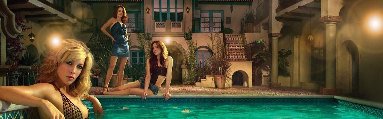 Wohnen in einem Appartementkomplex in der Nähe der berühmten Melrose Avenue von Los Angeles und machen sich oft das Leben schwer: Sydney Andrews (... - Bildquelle: 2009 The CW Network, LLC. All rights reserved.